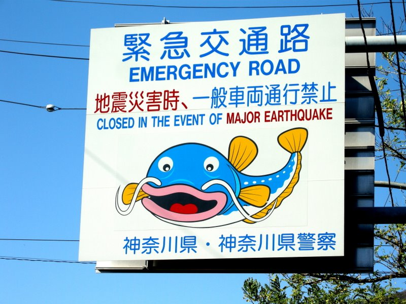 I love wacky signs - catfish predict earthquakes, even in the mountains, right?