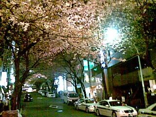 Sakura-ga-oka