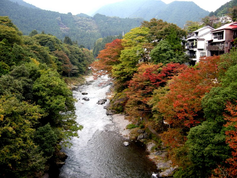 Tama River at Mitake: Oct 2009