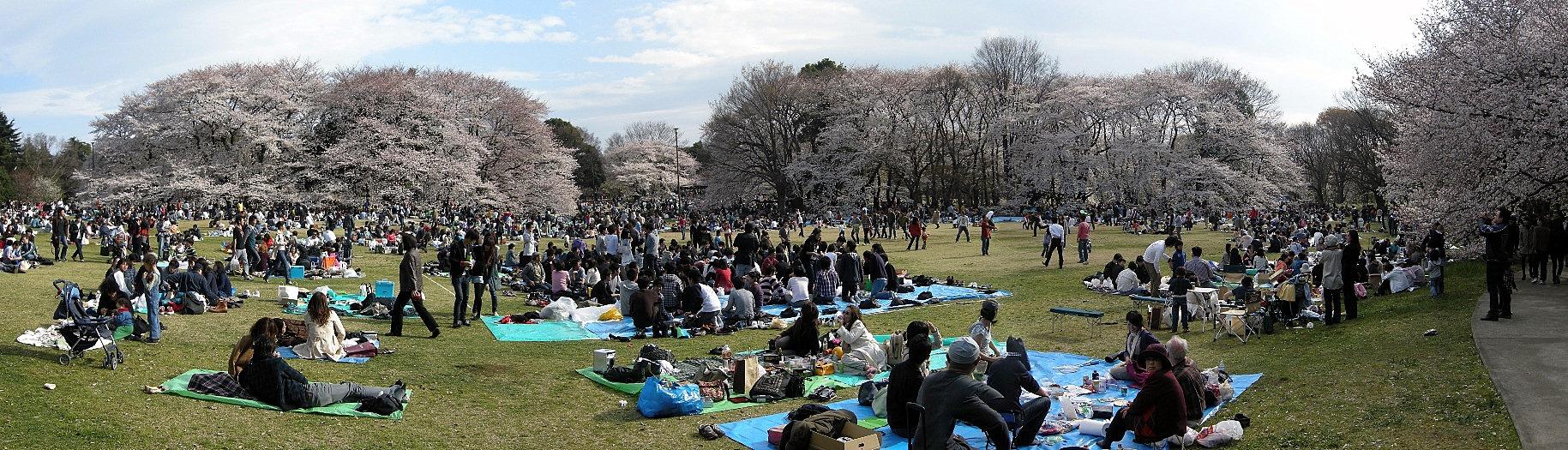 Kinuta Park, Setagaya-ku