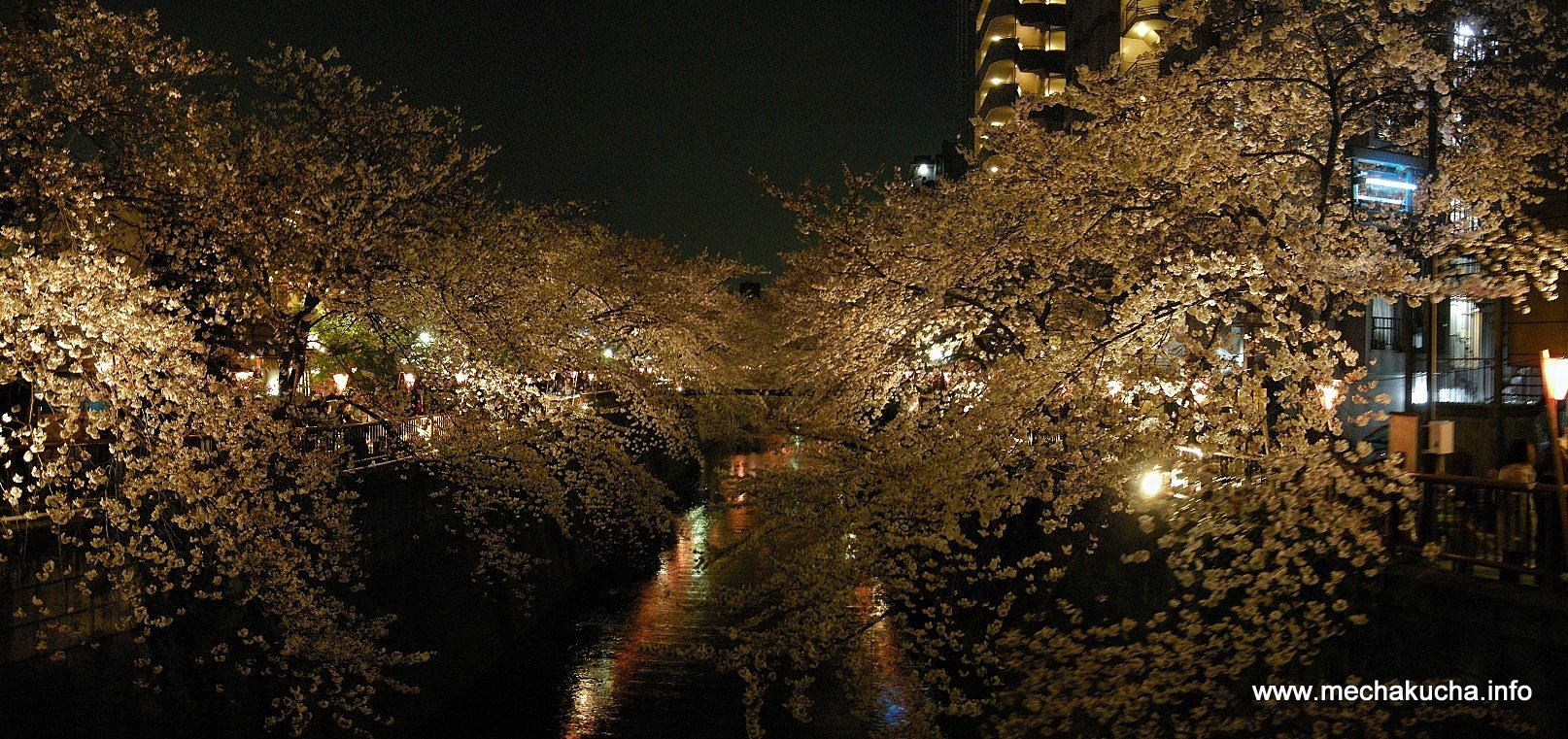 The Meguro River @ Nakameguro